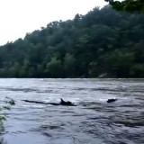 Река Обь. Сама КРАСАВИЦА!
