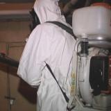 Обработка от блох в подвале Волоколамск